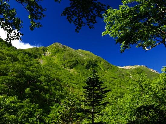 夏色の稜線.jpg